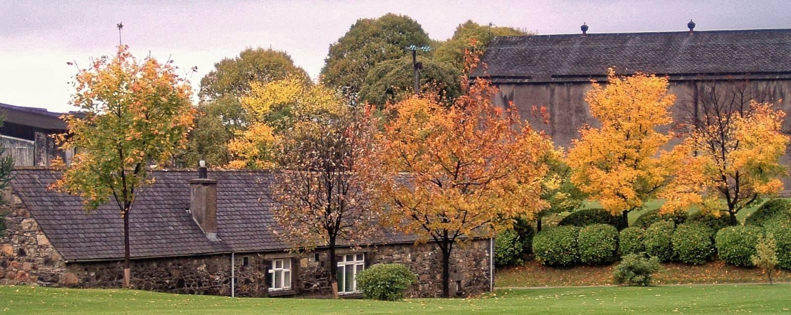 Macallan Park